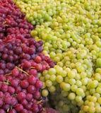 绿色和红色无核的葡萄 免版税库存图片