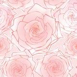 花卉无缝的背景。 花玫瑰色模式。 库存图片