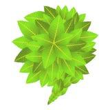 Идет зеленая социальная маркетинговая кампания Стоковые Фото