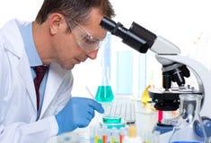 工作在有试管的实验室的实验室科学家 免版税图库摄影