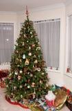 传统圣诞树 库存图片