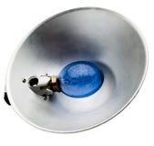在灯罩的电灯泡 免版税图库摄影