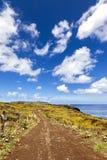 弯曲的石渣路在复活节岛 免版税库存图片