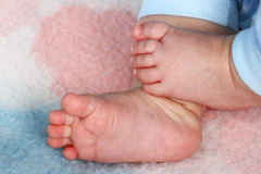 婴孩脚趾 免版税库存照片