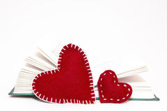 Αγάπη που διαβάζει Στοκ φωτογραφία με δικαίωμα ελεύθερης χρήσης