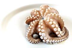 在牌照的新鲜的未煮过的章鱼 免版税库存照片