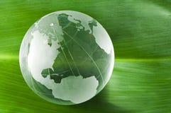 在绿色叶子的玻璃地球 库存图片