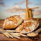 新近地被烘烤的传统面包 库存图片