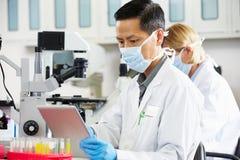 使用片剂计算机的男性科学家在实验室 免版税库存图片
