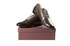 对在配件箱的棕色男性鞋子 免版税库存照片
