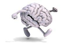 与胳膊和腿跑的人脑 免版税图库摄影