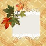 Ανασκόπηση φθινοπώρου με τα ζωηρόχρωμα φύλλα Στοκ Εικόνα