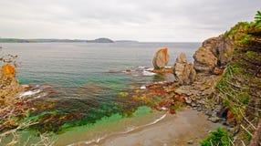 Στοίβες θάλασσας στην ακτή της νέας γης Στοκ Εικόνες
