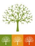 Людское дерево Стоковые Изображения