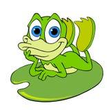在睡莲叶的逗人喜爱的青蛙 免版税库存照片