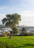 维特纳全景从格兰特公园的 免版税库存照片