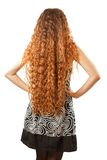 从长的卷发的发型从返回 库存照片