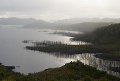 Ущерб окружающей среде Стоковая Фотография RF