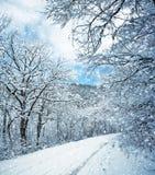 Место зимы Стоковое Изображение