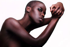 黑色非裔美国人的英国时装模特儿纵向 免版税库存照片