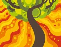 Дерево лета Стоковая Фотография RF