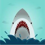 鲨鱼开放嘴在海洋 免版税库存照片