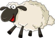 滑稽的绵羊动画片 库存图片
