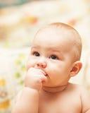 Λίγο παιδί που τρώει το μπισκότο Στοκ Φωτογραφίες