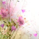 Флористическая граница, красивейшая запачканная предпосылка Стоковая Фотография
