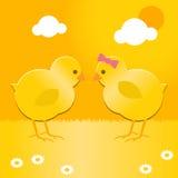 复活节小鸡 免版税图库摄影