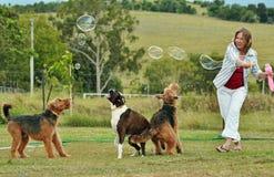 使用与她的狗的妇女吹的泡影 免版税库存照片