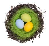 Αυγά Πάσχας σε μια φωλιά Στοκ φωτογραφίες με δικαίωμα ελεύθερης χρήσης