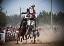 撒丁岛。 在马背上危险等级 图库摄影