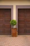 在二个停车库门之间的盆栽植物 免版税库存图片