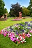 有五颜六色的杜娟花的被修剪的花园。 库存照片