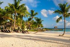 与棕榈树的日落梦想海滩在沙子。 热带天堂。 多米尼加共和国,塞舌尔群岛,加勒比,毛里求斯。 葡萄酒 免版税库存图片