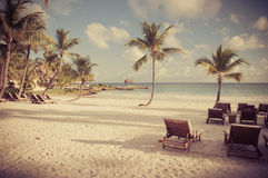 与棕榈树的梦想海滩在沙子。 葡萄酒 免版税图库摄影