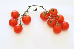 Μικρές ντομάτες στην άσπρη ανασκόπηση Στοκ φωτογραφία με δικαίωμα ελεύθερης χρήσης
