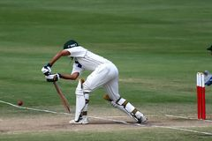 сверчок игрок с битой, отбивающий мяч Стоковая Фотография RF