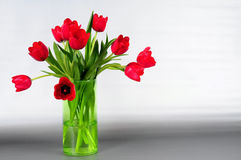 红色郁金香花瓶 免版税库存照片