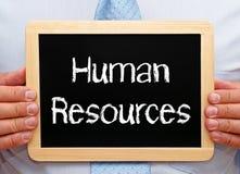 Человеческие ресурсы Стоковое Фото