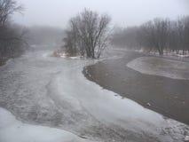 Туманнейший день зимы Стоковое Изображение