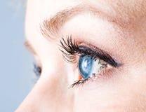 Глаз Стоковое фото RF
