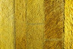 黄绿皮革补缀品 库存图片