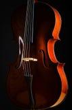 小提琴在暗室 免版税库存照片