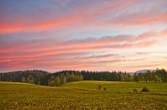 在农场的风景在清早期间 免版税库存照片