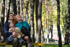 Семья на парке Стоковое Изображение
