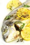 被烘烤的海鲷 免版税库存照片
