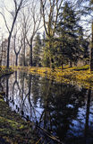 Река в парке Монцы Стоковое Фото