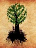 与绿色叶子的抽象树 库存图片